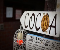 cocoa08